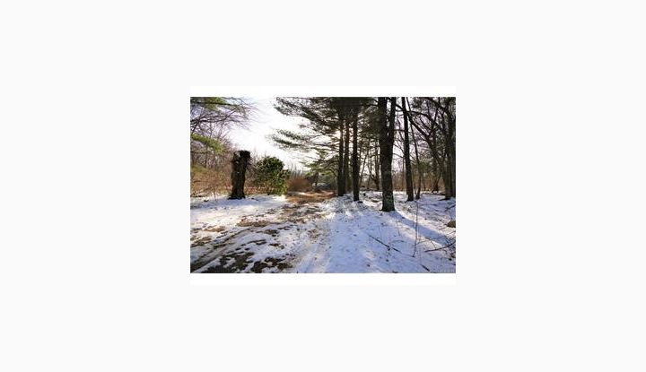 837 Gibson Hill Rd Sterling, CT 06377 - Image 1