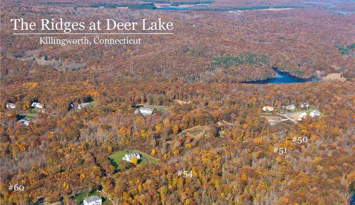 Lot 60 Beaver Dam Road - Image 1