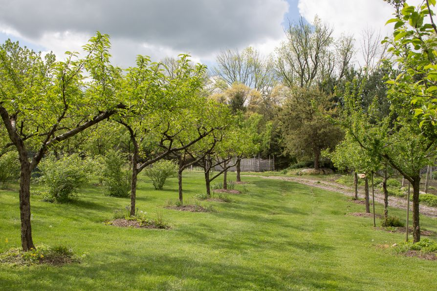 29 Wood Road Bedford Hills, NY 10507 -Image 7