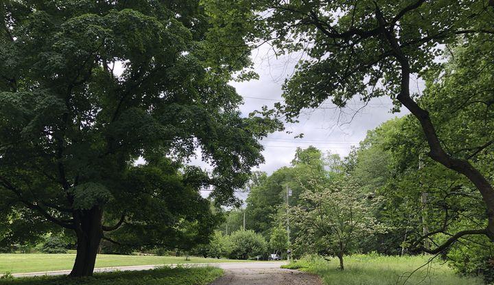 17 North Lake Road - Image 1