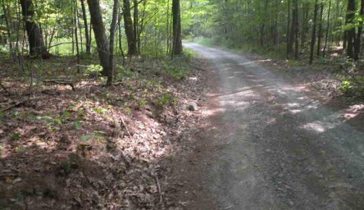 0 Sandy Plains Road - Image 1