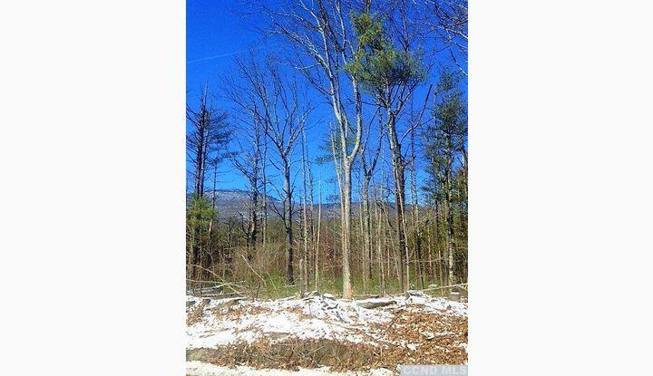 0 Route 23A Catskill, NY 12414 - Image 1