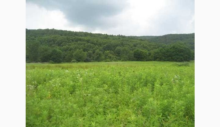 CART RD DOVER PLAINS, NY 12522 - Image 1