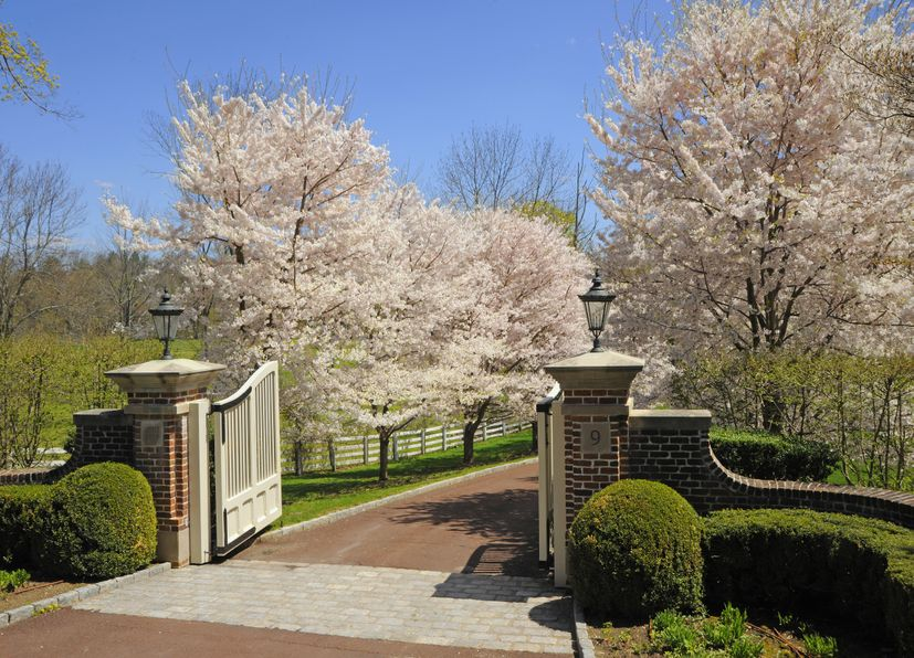 9 Conyers Farm Drive Greenwich, CT 06831 -Image 3