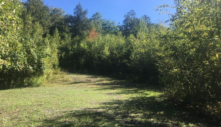 68 Old Stonewall Rd - Image 1