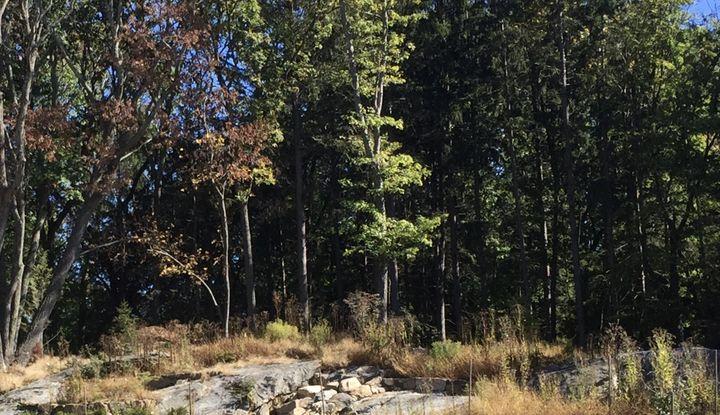 23 North Lake Road - Image 1