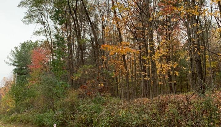 0 Upper Cady Road - Image 1