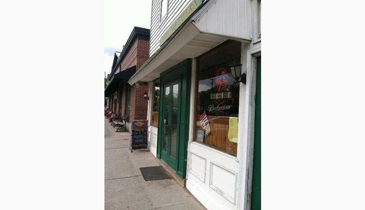 42 CHARLES COLMAN BLVD PAWLING, NY 12564 - Image 1